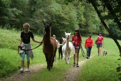 Ferme aux lamas - balade trekking