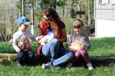 Ferme aux lamas - anniversaire des enfants
